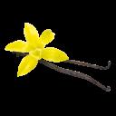 liegende Vanilleschoten mit Blüte