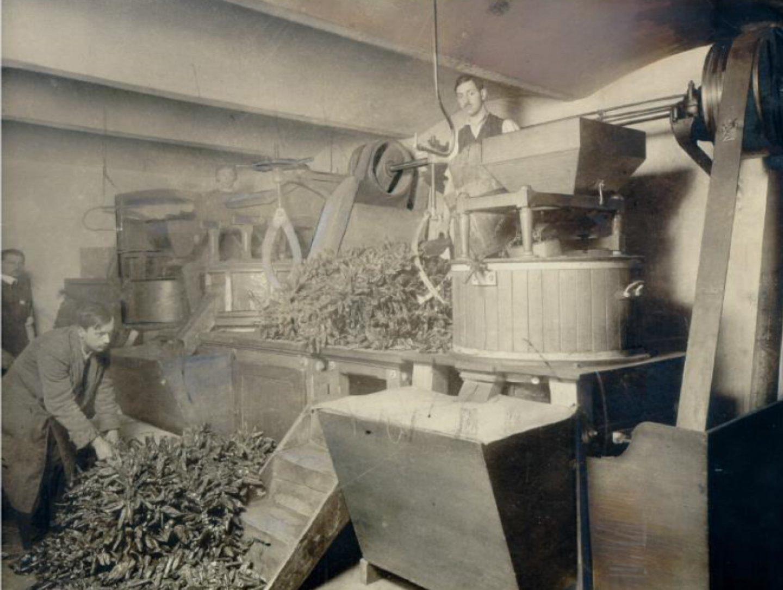 Črno-bela fotografija: mlinček za papriko Kotányi iz leta 1881