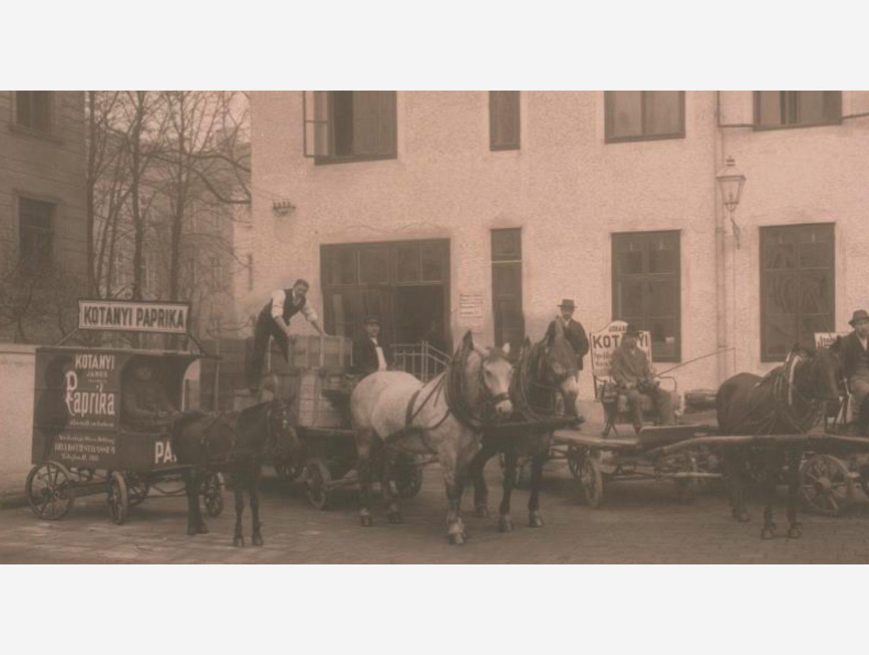 Črno-bela fotografija: dostava paprike s kočijami, ki jih vlečejo konji leta 1881